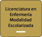 lic_escolarizada